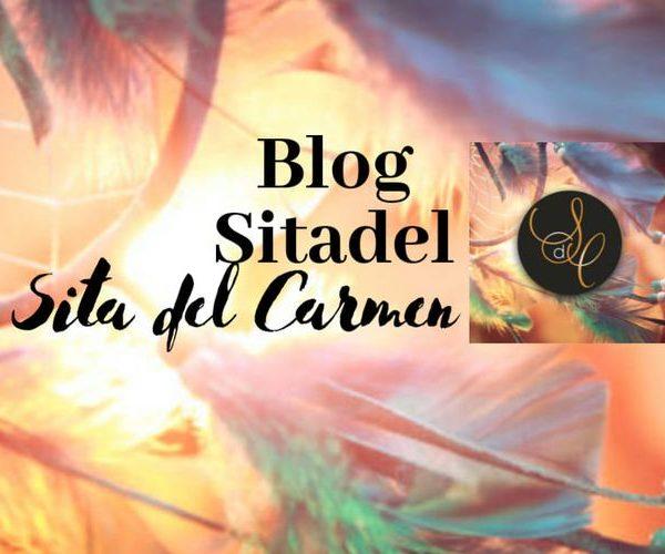 Volg mijn Blog Sitadel